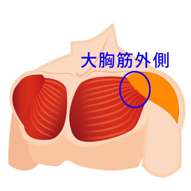 大胸筋外側