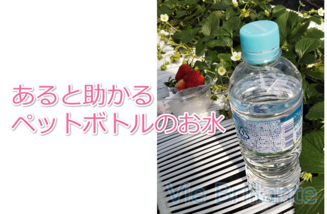 ペットボトルのお水
